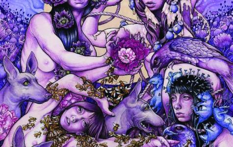Purrcussion: Purple Prevails