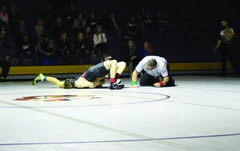 Bengal wrestling wins pin by pin