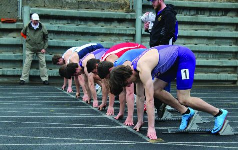 Bengals track team sprints to state