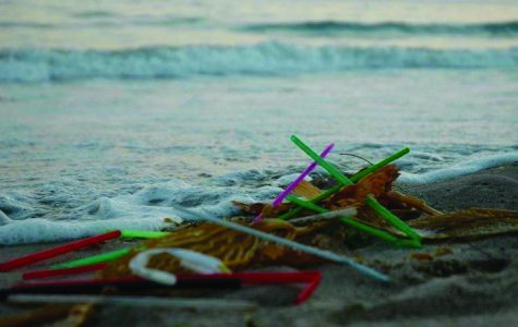 Straws accumulate the seaside in southern California.