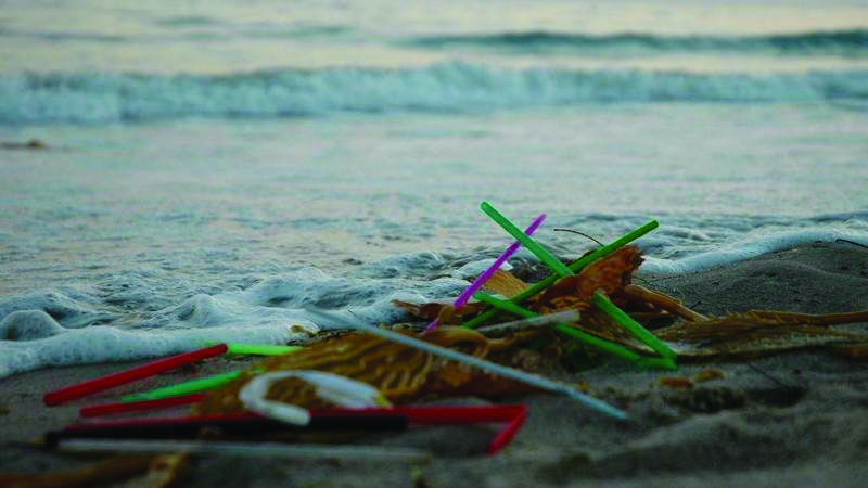 Straws+accumulate+the+seaside+in+southern+California.+