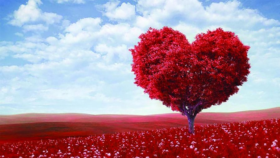 A heart shaped tree sits in a field of Roses